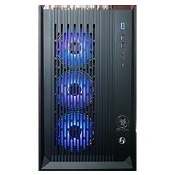 Custom Pc ANT PC SOLENOPSIS RZ700XT
